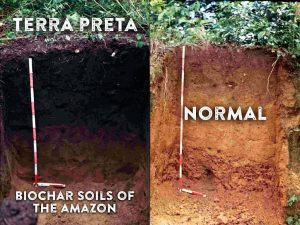 sacred soil biochar and the regeneration of the earth